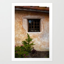 Window beauty Art Print