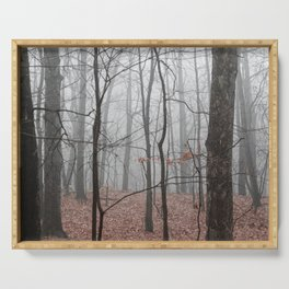Woods on a Foggy Sunday Stroll Serving Tray