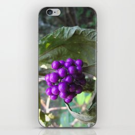 Beautyberry iPhone Skin