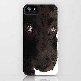 Chocolate Labrador Puppy iPhone Case