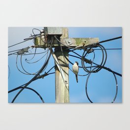 Wired Art Canvas Print