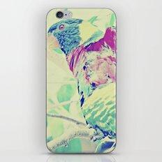 Colorful Bird Dreams  iPhone & iPod Skin