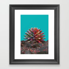 Simple Coral Framed Art Print