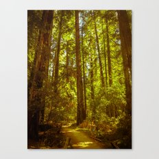 Beneath the Giants Canvas Print