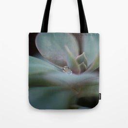 Beautiful Succulent Tote Bag
