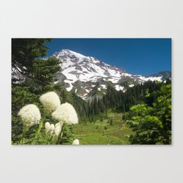 Mt. Rainier from Van Trump Park - Mt Rainier National Park Canvas Print
