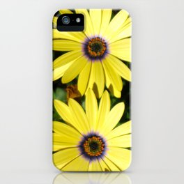 And Pretty Maids All In A Row iPhone Case