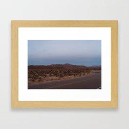 Cholla Cactus Garden XVIII Framed Art Print