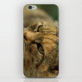 Kitty3 iPhone Skin