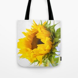sunflower, girassol Tote Bag