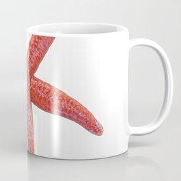 Starfish Body Fish Asteroidea Red Salty Water Echinoderm Coffee Mug