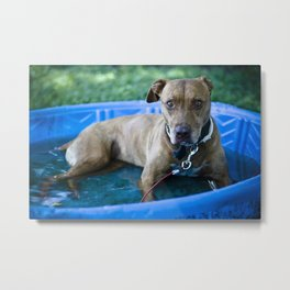 Pool Party Metal Print