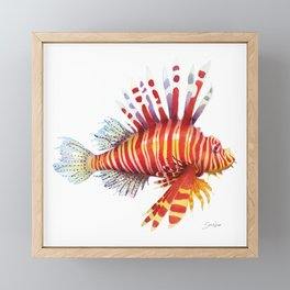 Firefish - lion fish Framed Mini Art Print