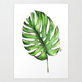 Monstera green leaves Art Print