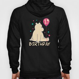 1st Birthday Baby 1 Year Old 365 Days Hoody