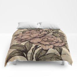 Peonies  - Color Comforters