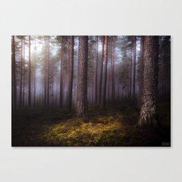 Silence Speaks Canvas Print