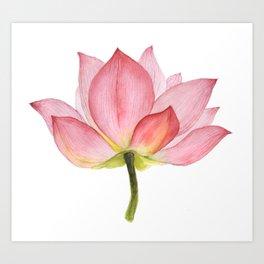 Pink lotus #2 Art Print