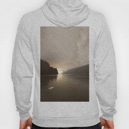 Swan lake Hoody