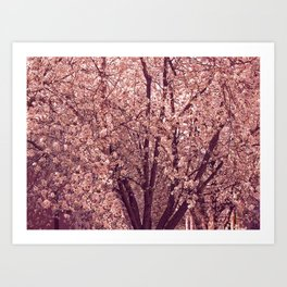 BLOSSOMING. Art Print