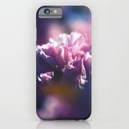 Sakura Six - Pink Cherry Blossoms iPhone Case