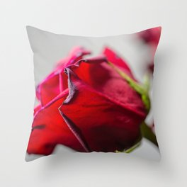 Single Red Rose, photography Throw Pillow