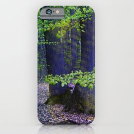 Shining forest iPhone Case