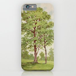 Vintage Print - Familiar Trees and Leaves (1911) - Black Walnut iPhone Case