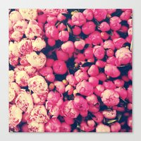 peonies Canvas Prints featuring Peonies by Sasha H