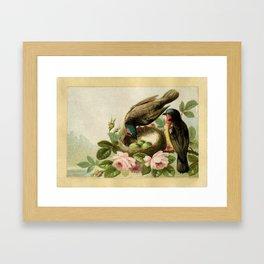 Vintage Birds with Nest Framed Art Print