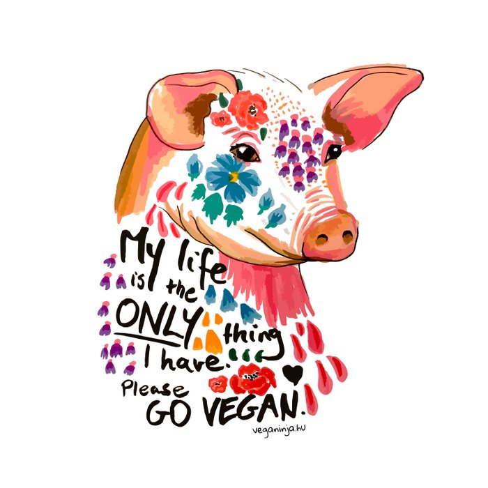My life is the only thing I have. Go Vegan. Comforters
