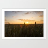 Light Field Art Print