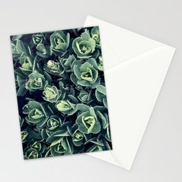 GREEN LEAVES PATTERN [plant nature photography] Stationery Cards