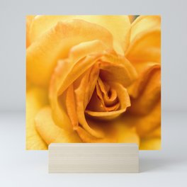 Yellow Rose Mini Art Print