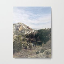 Hidden pond at Yellowstone Metal Print
