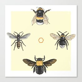 Bees on bees Canvas Print