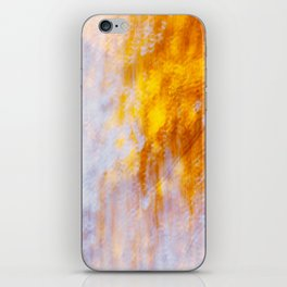 Indian Summer iPhone Skin
