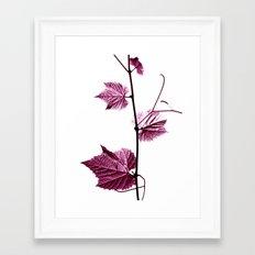 wine leaf abstract I Framed Art Print