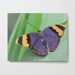 Violet Butterfly on green Leaf Metal Print