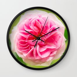 Pink Rose On A Natural Green Background #decor #society6 #buyart Wall Clock