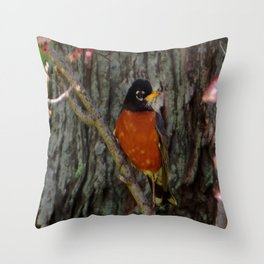 Michigan State Bird Robin Throw Pillow
