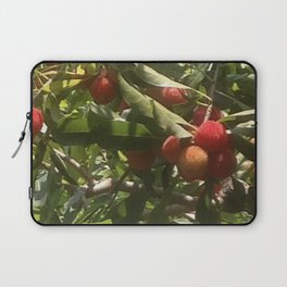 RED BAYBERRY Laptop Sleeve