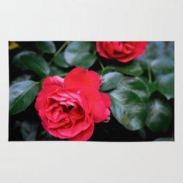 Moody Roses Rug