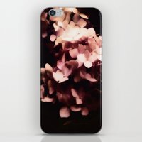 hydrangea iPhone & iPod Skins featuring Hydrangea by Christine Belanger