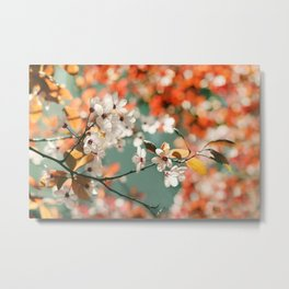 Plum Cherry Blossom Metal Print