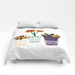 Potted Colorful Succulent Plants Comforters