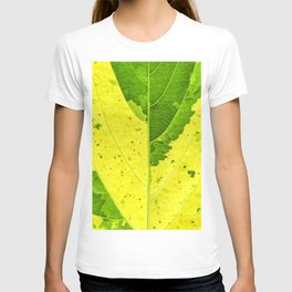 Leaf with abstract patterns 3 T-shirt