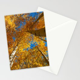 Aspen Canopy Stationery Cards