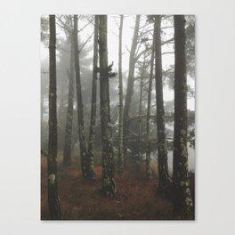 Muir Meadows Canvas Print