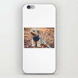 Kingsley iPhone Skin